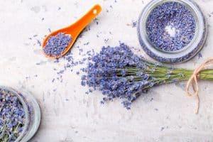 aromaterapia-lavandula